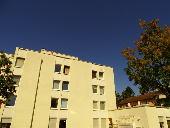WEG in Bonn, 68 Apartments